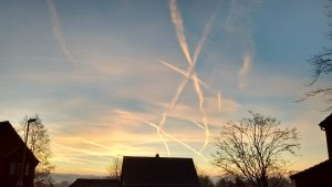 Vapour trails cross the sky at sunrise in Badger Farm.
