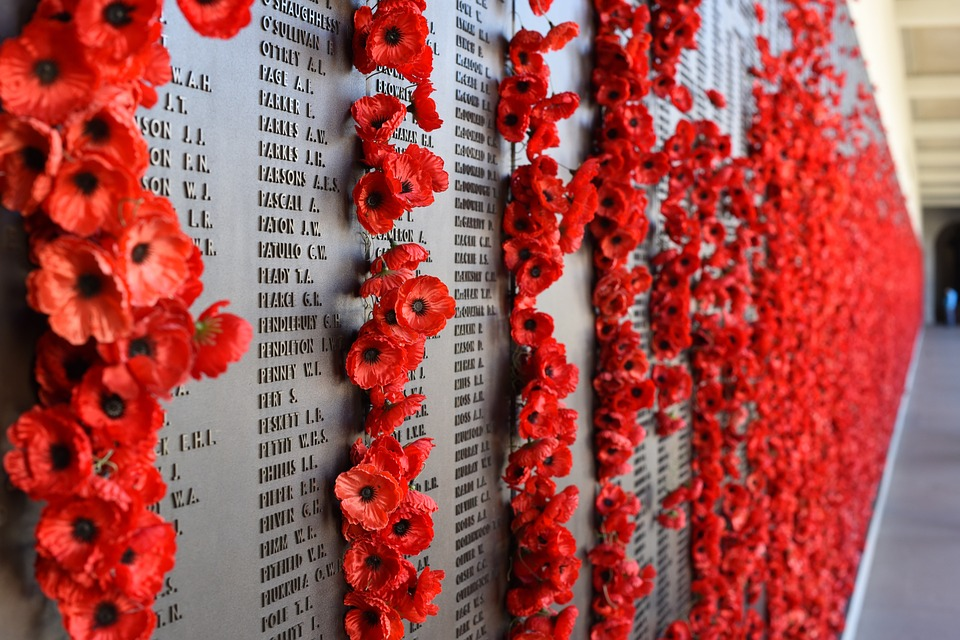 Red poppies placed on a wall of remembrance