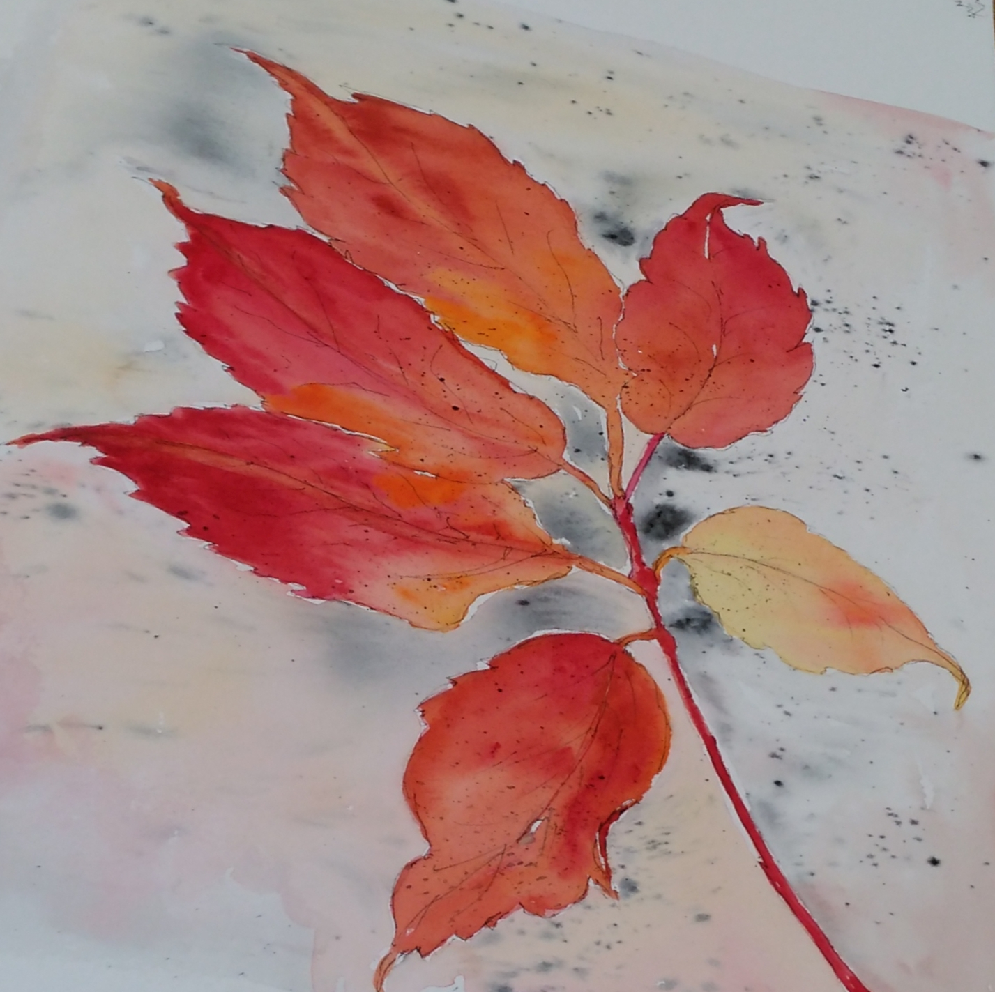 A watercolour of a leaf showing autumn colours, red and gold.