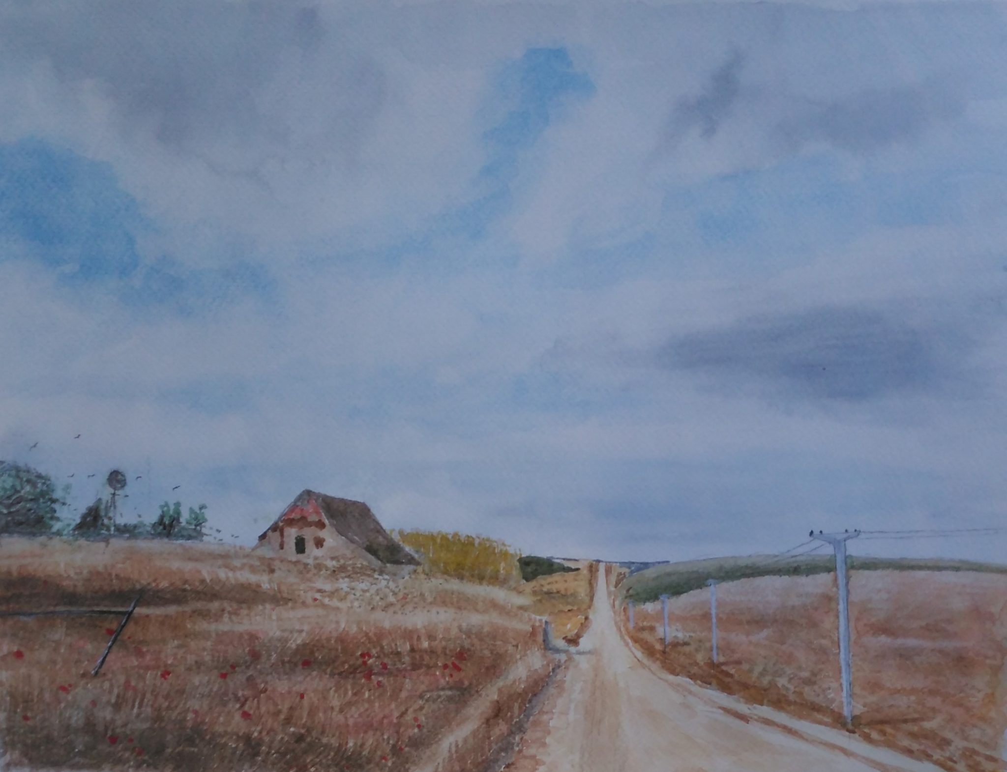 A watercolour of a country lane between two fields of corn and poppies.