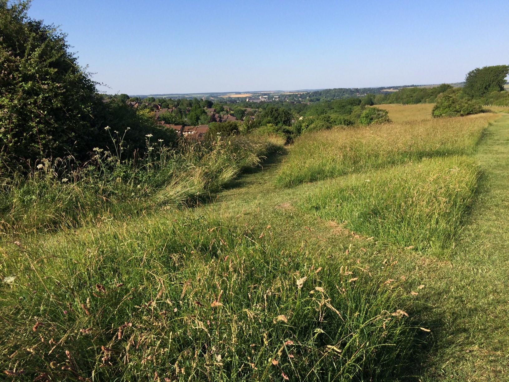 Whiteshute Ridge in Winchester