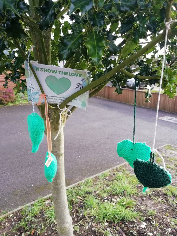 Green hearts made by the WI hanging in a tree #ShowTheLove