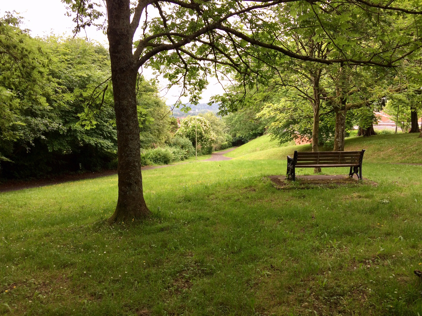 A bench in Badger Farm
