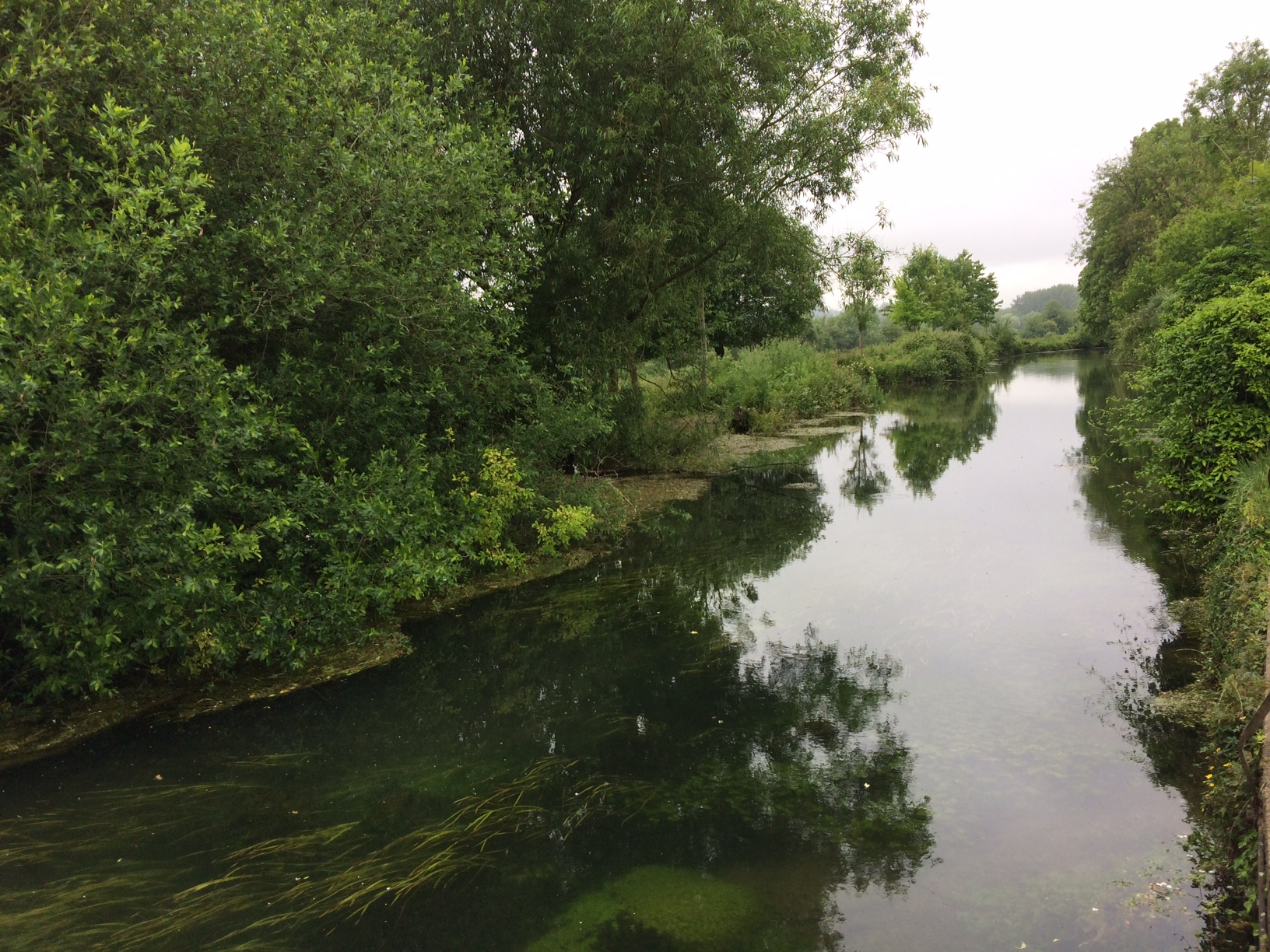 The River Itchen running through the water meadows in Winchester