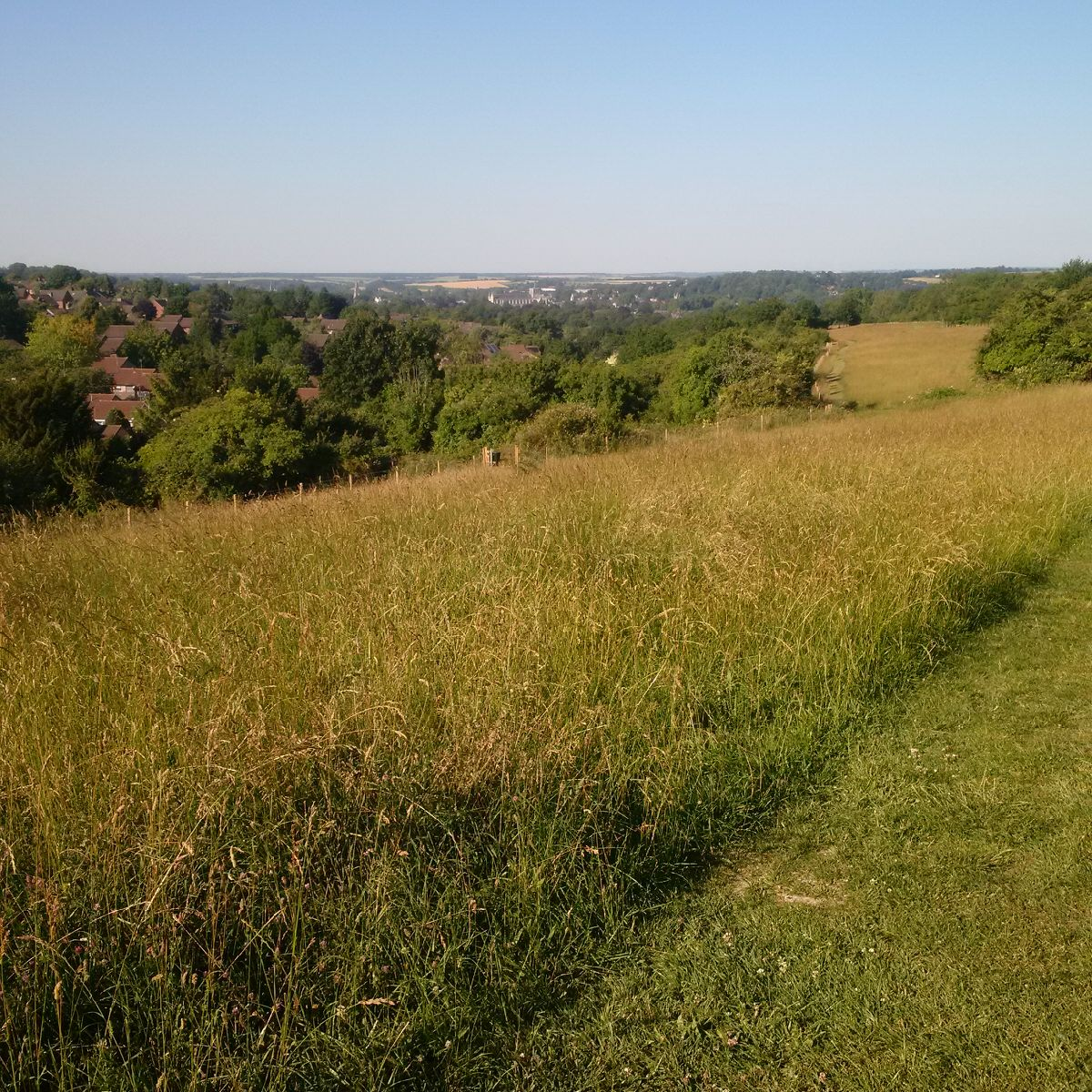 A distant view of Winchester Cathedral from Whiteshute Ridge