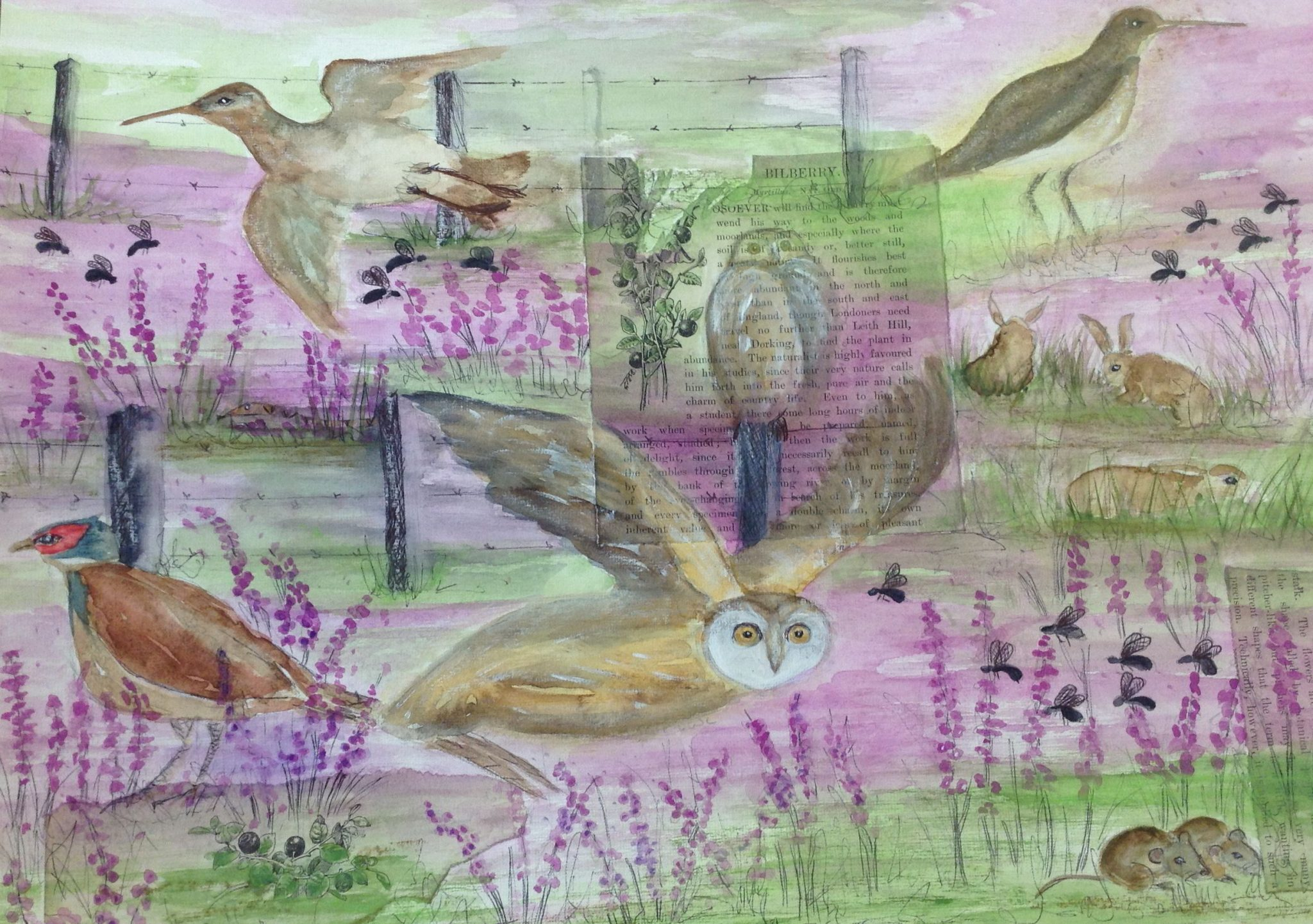 A watercolour painting of wildlife in a meadow with purple flowers
